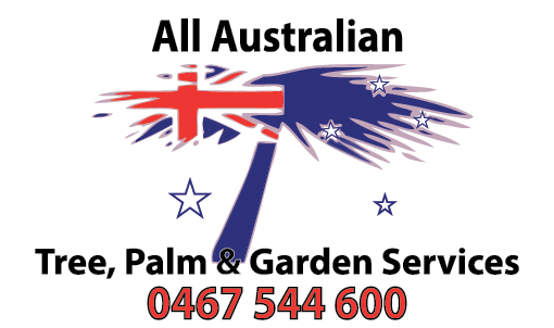 All Australian Tree Palm and Garden